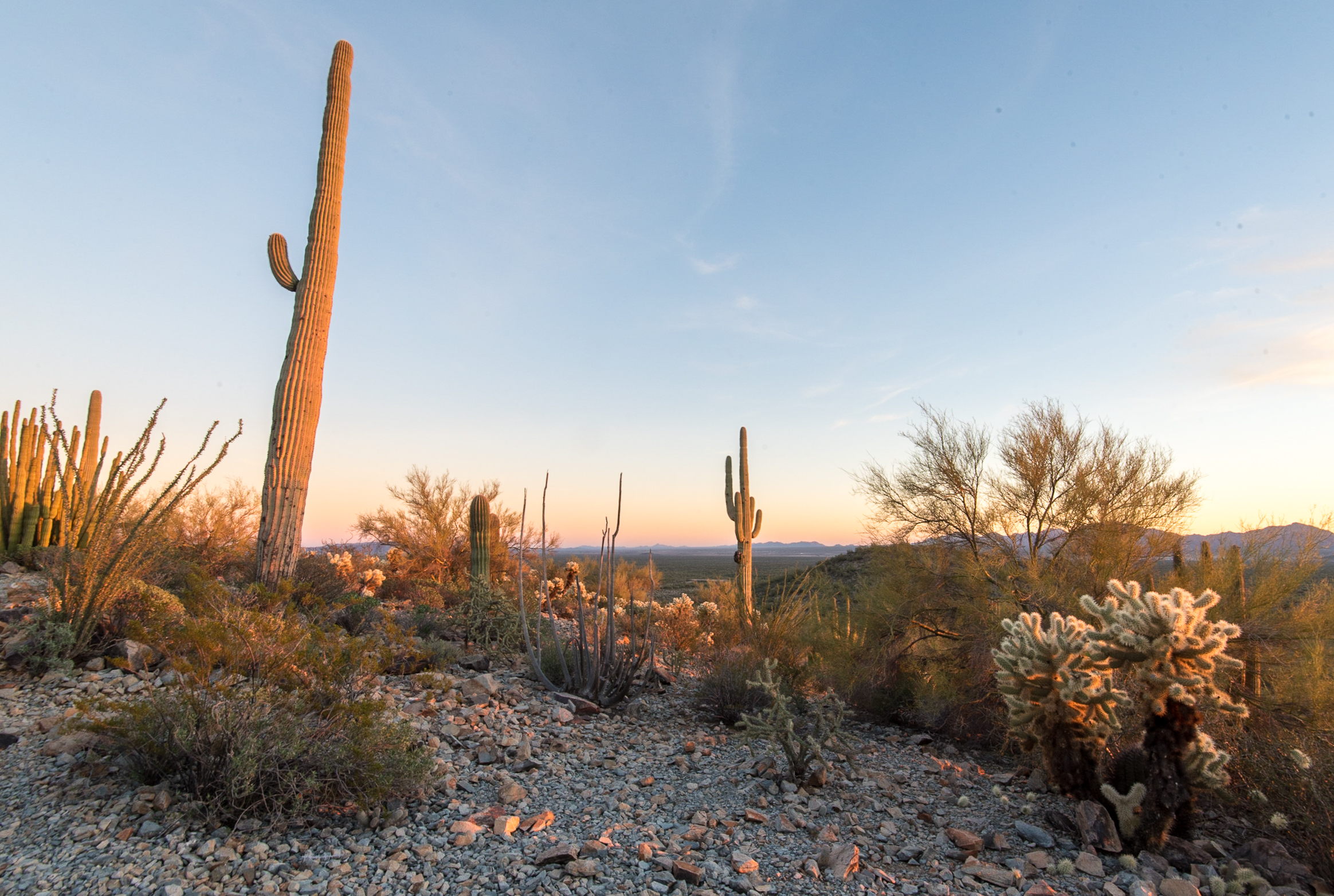 The 5 Best Winter Camping Spots in Arizona
